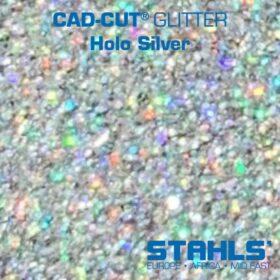 Holo Silver